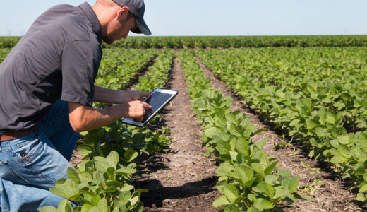 Smartphone technology application to infrared multispectral imaging for use in precision agriculture