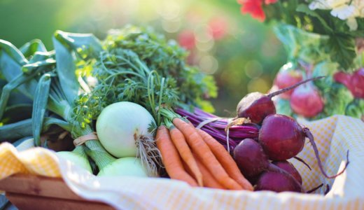 Nutrition-centered decision making to increase vegetable consumption and reduce food waste in the supply chain (WASTENULE)