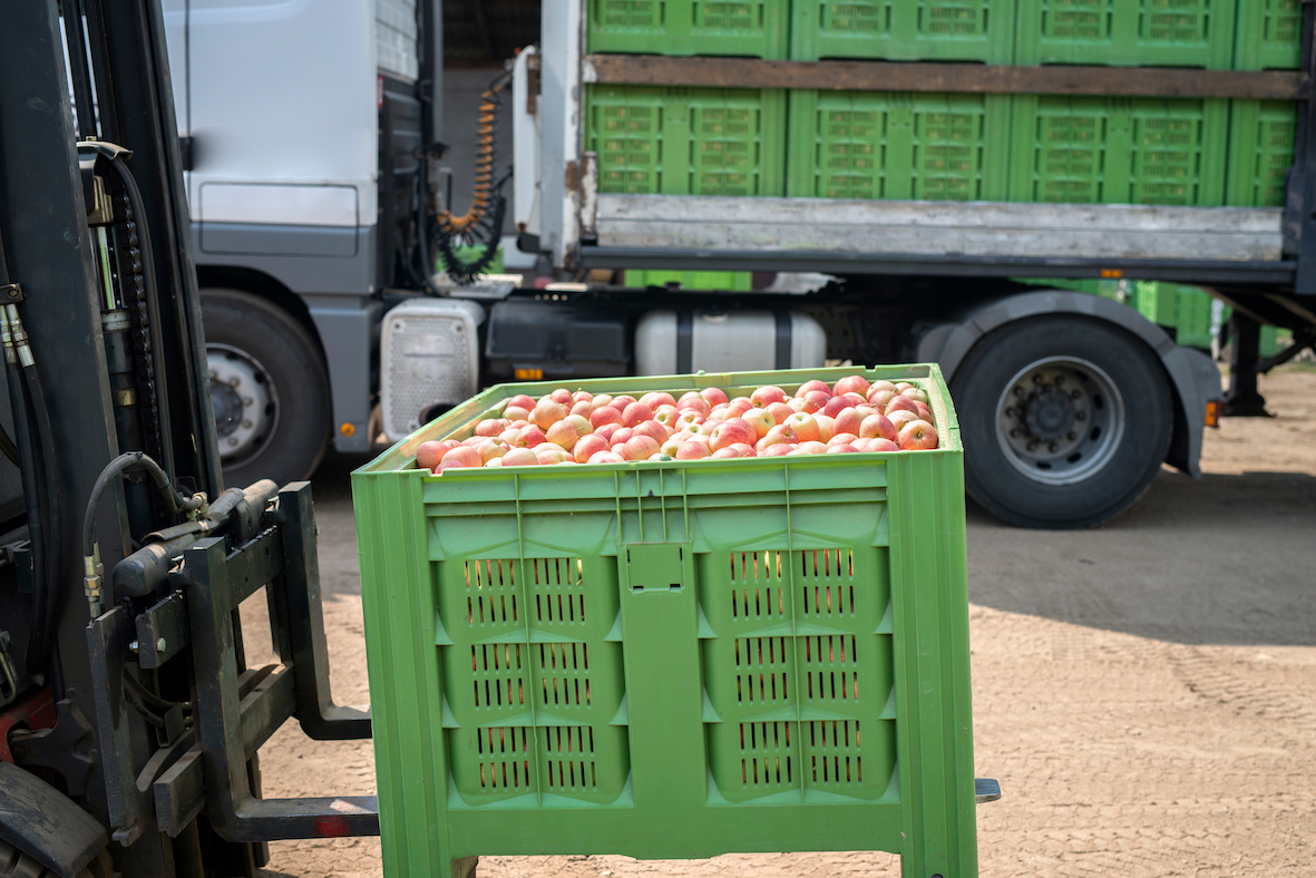 Apples in crate on folklift truck