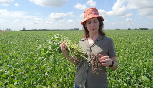 Agri-Tech Innovation Opportunities in Argentina