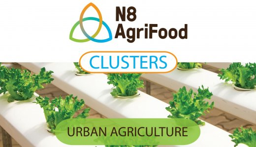 Resource Use Efficiency in Urban Agriculture webinar