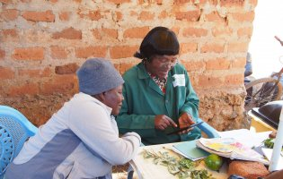 Digital development in agricultural extension for smallholder farmers