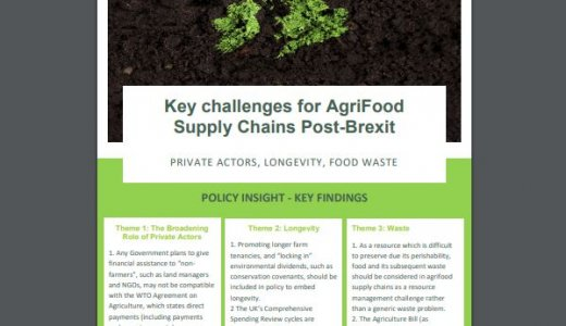 Policy Insight - Key challenges for AgriFood Supply Chains Post-Brexit