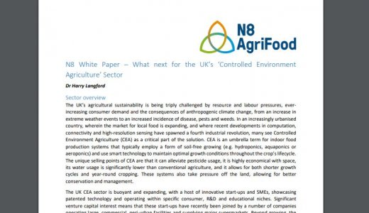 White paper - What's next for the UK's 'Controlled Environment Agriculture'