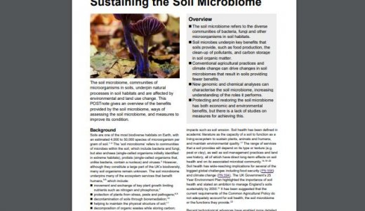 POSTnote - Sustaining the soil microbiome
