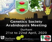 Genetics Society Arabidopsis Meeting