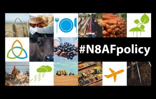 N8 AgriFood Policy Week starts today