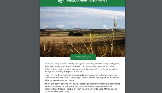 Policy Brief - What is the evidence that public money leads to public goods delivery from agri-environment schemes?