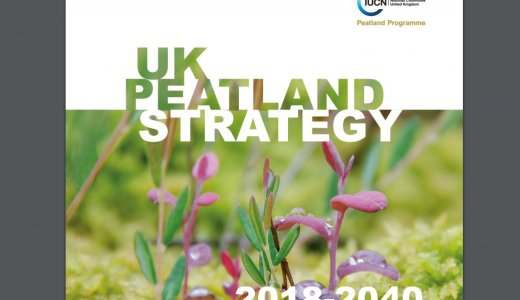 UK Peatland Strategy
