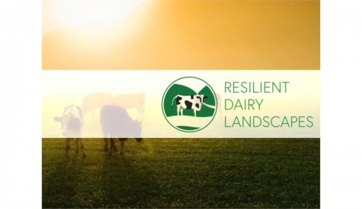 Video - Resilient Diary Landscapes Impact Ambitions