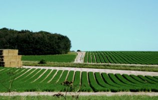 The future of agri-environmental sensing