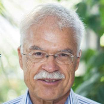 Professor Dr Heiner Goldbach