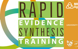 Rapid Evidence Synthesis Training