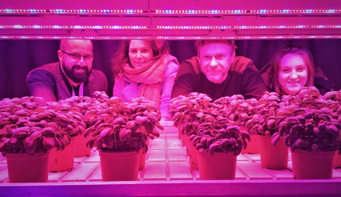 Urban Agriculture experts from across the North come together for N8 AgriFood's first Cluster Innovation Visit