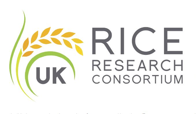 Inaugural UK Rice Research Consortium showcases work from across the N8