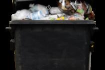 N8 AgriFood / University of Sheffield: Food waste workshop