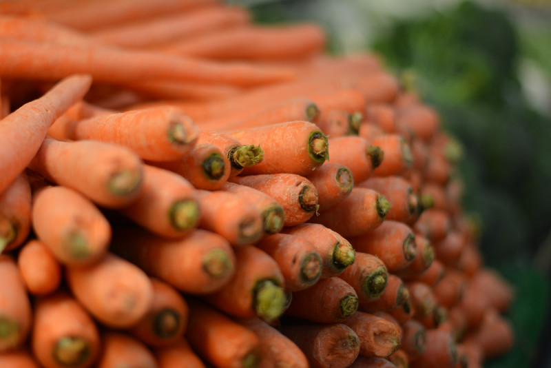 Global food experts urge for more action to educate the public about their diets